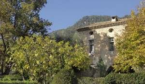 Affitto stagionale Mulino Valbonne